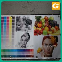 Impression de fruits légumes Design Stand Flex vinyle bannière