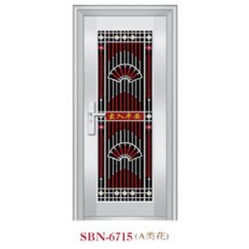Stainless Steel Door for Outside Sunshine (SBN-6715)