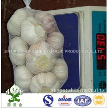Normal White Garlic 5cm 500gram Small Packing