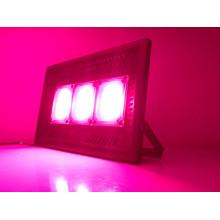 Lampe commerciale à spectre complet LED élèvent la lumière