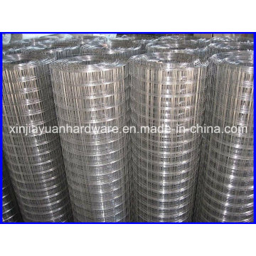 Hot DIP Galvanized /PVC Coated Welded Wire Mesh