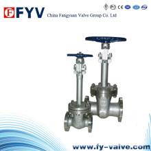 Válvula de porta criogênica manual de alta pressão