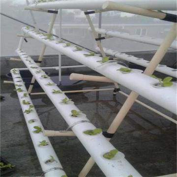 NFT Hydroponics Tower system for Greenhouse Vegetables