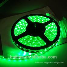 2015 nuevo producto tira de LED de 12V CE RoHS