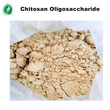 Deacetilación de oligosacáridos de quitosano solubles en agua de grado agrícola de más del 90%