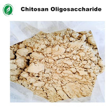 Deacetylation more than 90% agriculture grade water soluble chitosan oligosaccharide