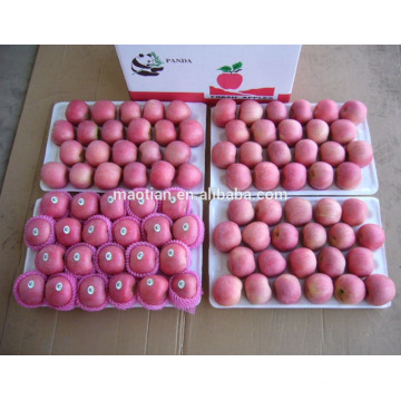 pommes fraîches à vendre