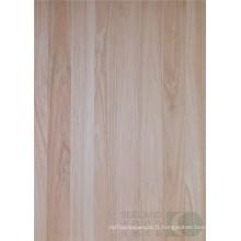 Eucalyptus massif panneau pour meubles