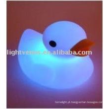 design bonito pato aminal noite luz