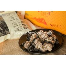Alta Qualidade Seco Chá Flor Cogumelo Vegetal Saudável