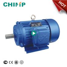 Schimpansen-Qualität Y Serise Dreiphasenmotor