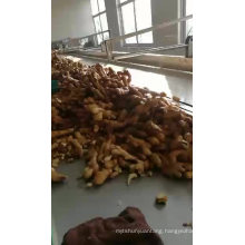 Chinese Shandong Fresh Ginger 2017 the Newest Crop