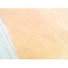 18mm Pine Plywood with Combined Core E1 Glue Ab Grade