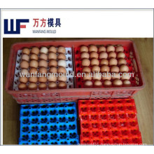 hot runner system plastic egg tray injection mould supplier