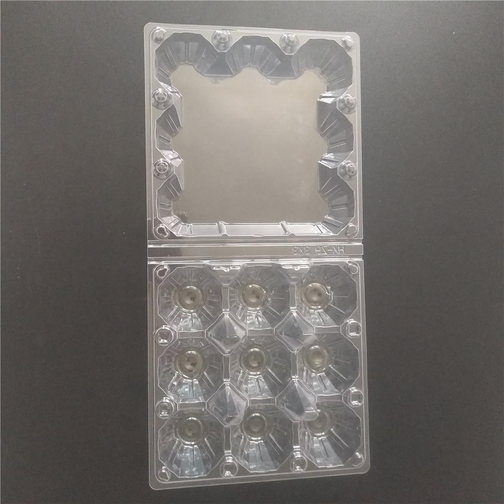 medium plastic egg trays