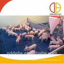 caisses populaires de sevrage galvanisées à chaud caisses de nurserie de porc