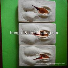 2013 HOT SALE training model of suturing vagina