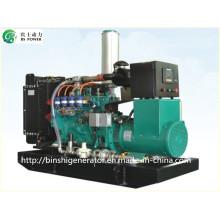Conjuntos de gerador de energia CNG de 100kVA