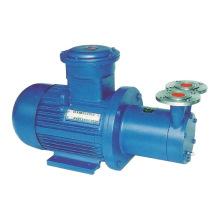 Pompe à eau rotatif magnétique CCB