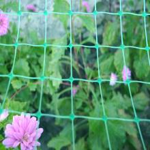 Plastic Garden Square Mesh Anti Bird Net