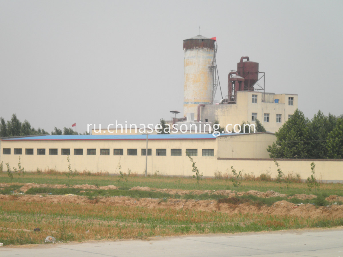 detergent powder factory