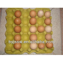 Recycle Paper Egg Tray Factory