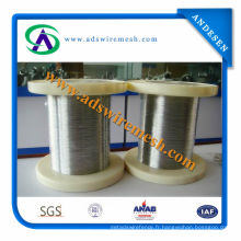 Hot Sale Stainless Steel Wire (304, 316L)