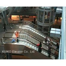 Escalera mecánica para la estación de tren u otro público