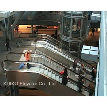 Escalator for Railway Station or Other Public