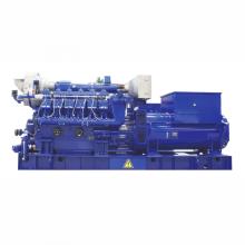 1000 kW Biogasgenerator