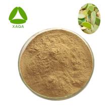 Cactus Extract Flavone Powder 10:1