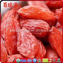 Low Suger Goji Beeren Vorteile Wolfberry Lycium Barbarum