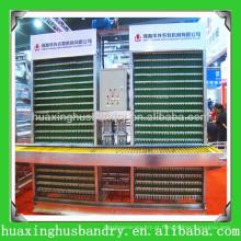 Sistema de coleta automático de ovos de alta qualidade quente e salgável