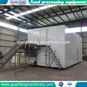 Iqf Cherry Frozen food quick freezing machine