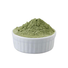 Hot sell good quality 100% Natural celery juice powder