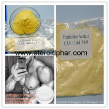 Poudre de stéroïde à haute pureté Trenbolone Hexahydrobenzyl Carbonate Parabolan pour le gain musculaire