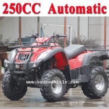Новый 250cc ATV автоматическая улице правовых ATV (MC-356)