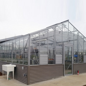 Venlo Glass Greenhouse for Vegetables or Flowers