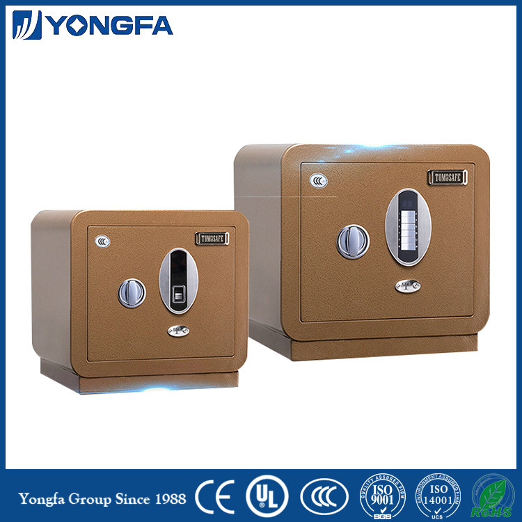 Fingerprint Safe Deposit Box