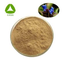 Arachnoid Cyanotis Root Extract powder Beta Ecdysone 40%