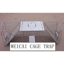 Raccoon, Groundhogs, Fox, Ferak Cats, Mountain Beaver Cages