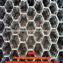 Blende 50 * 50mm Edelstahl Draht 316L niedrigen Preis thermostable Schildkröte Shell Mesh (Fabrik)