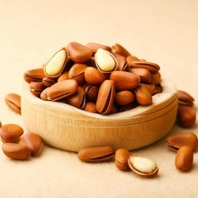 Wholesale bulk dried Pine nuts