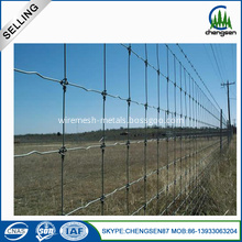 Galvanized Deer fence knot lock steel mesh