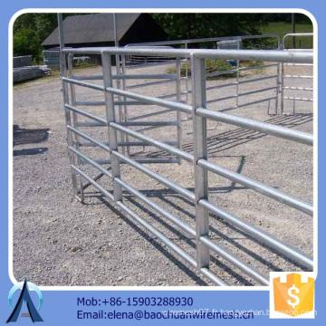 Clôture électrique pour mouton
