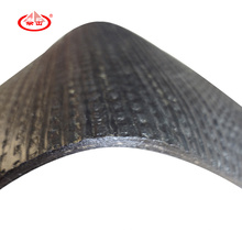 Appasphalt Waterproof Membrane Withplastic Body
