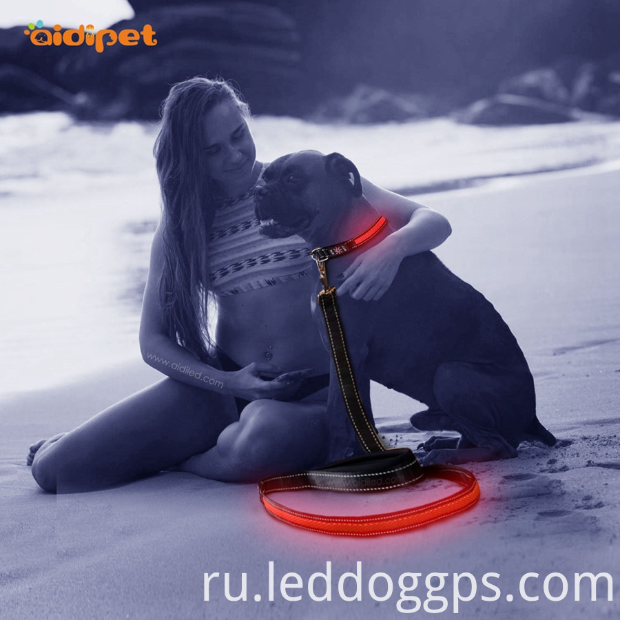 Usb Rechargeable Led Dog Leash