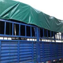 200GSM Heavy Duty PE Tarpaulin Sheet&PE Tarpaulin Sheet PE Tent Tarps in Roll Truck Cover Fabric