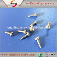 Produits de gros en Chine pan head à bride décorative autotaraudeuses vis