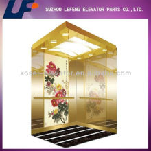 Comfortable and Effective China Residential Elevator